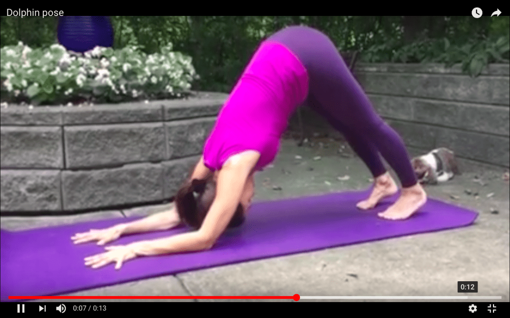 """Variation of arm position for dolphin and forearm stand"""
