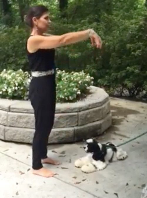 Commencing Form: Qi Gong Exercise 1